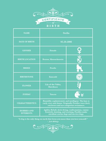 7 best Ideas for the House images on Pinterest Birth certificate - best of pet health certificate template