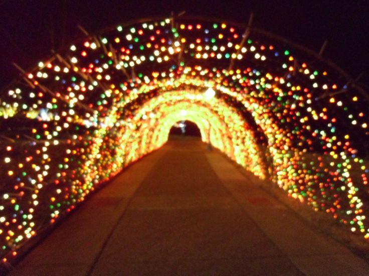 Tunnel of Lights Clarksville TN Christmas 2014 & 59 best Clarksville TN images on Pinterest | Christmas 2014 ... azcodes.com