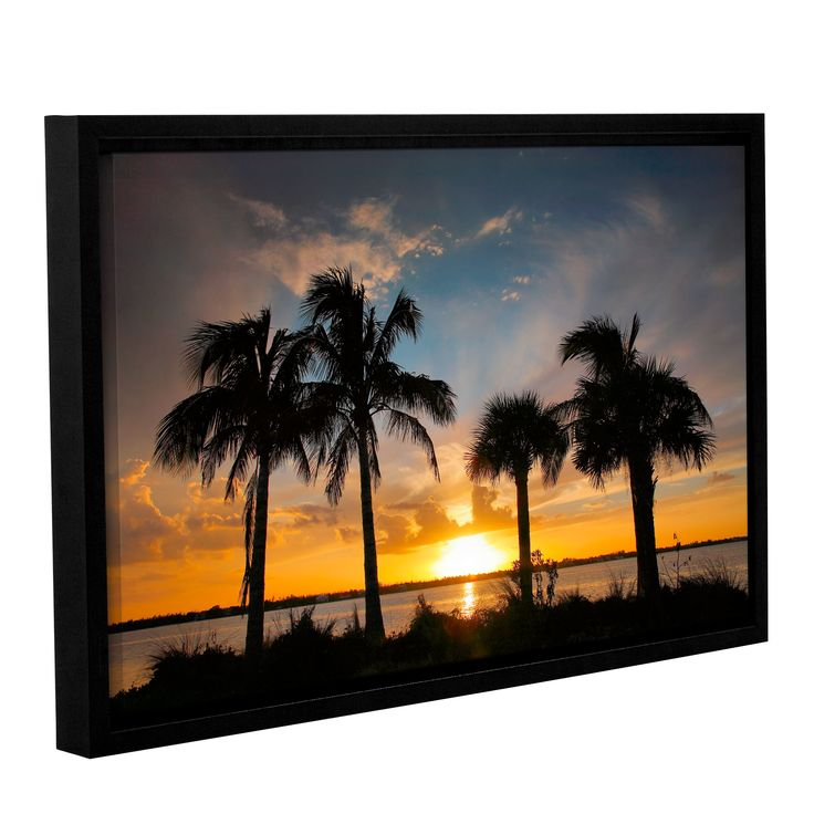 Tropical Sunset by Steve Ainsworth Framed Photographic Print on Wrapped Canvas