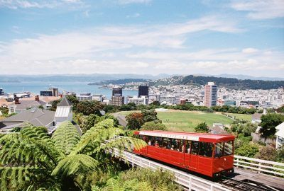 The New Zealand Travel Guide