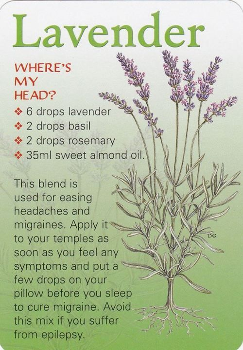 Nature Migraine remedy Lavender . Basil . rosemary . almond oil