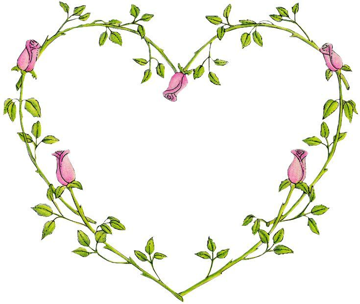 rose vine heart tattoos pinterest heart rose vines and vines. Black Bedroom Furniture Sets. Home Design Ideas