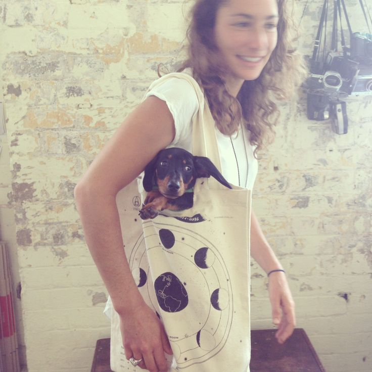 Little George the sausage dog in TMOD's moon phase chart bag http://tmod.com.au/product/moon-phase-bag