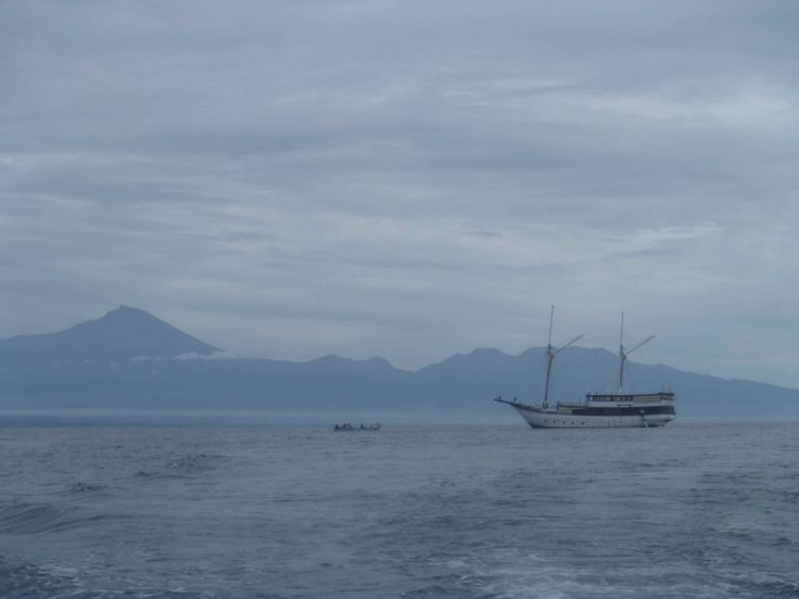 Boat full of environmental scientists, landscape architects and more. Tanjun Ringit, Lombok