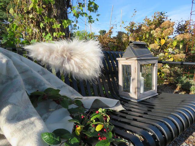 Høsten setter sitt preg på hagebenken rundt furua
