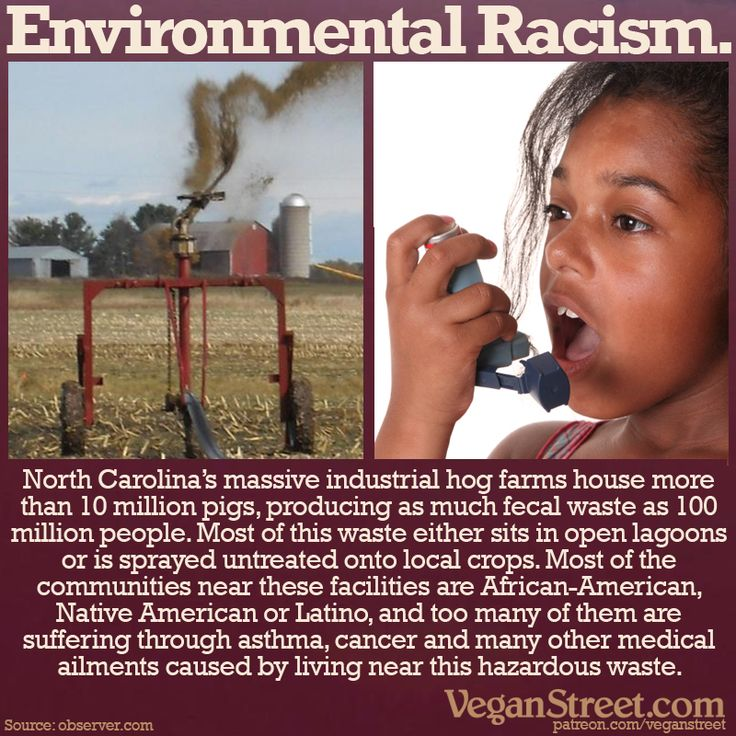 People of color in North Carolina are disproportionately burdened with the repercussions of living so close to untreated waste from hog farms: asthma, acute blood pressure increase, impaired neurobehavioral and pulmonary function and cancer. http://veganstreet.com/dailymeme-1-11-18.html