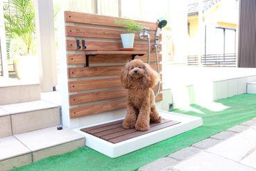 わんちゃんが使える立水栓 屋外シンク 庭 デザイン Diy 屋外パティオ