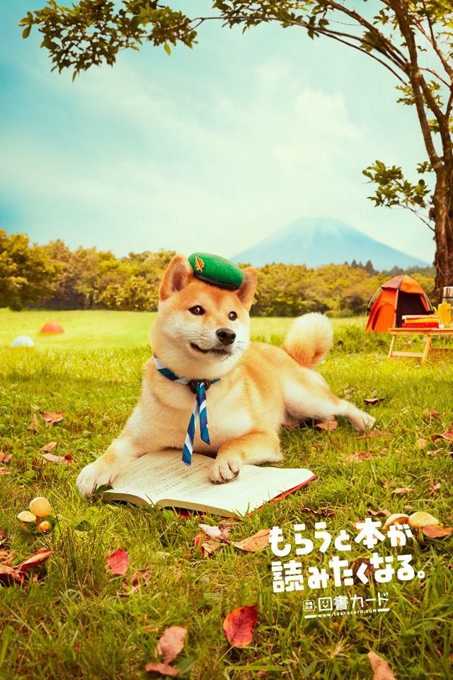 fall walking /2013 秋/図書カード/poster/