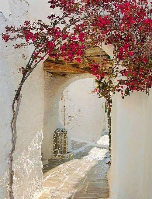 Alley in Santorini  I like the arch and the pretty flowers.