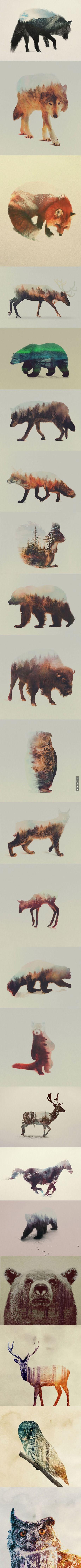 Double Exposure Animals