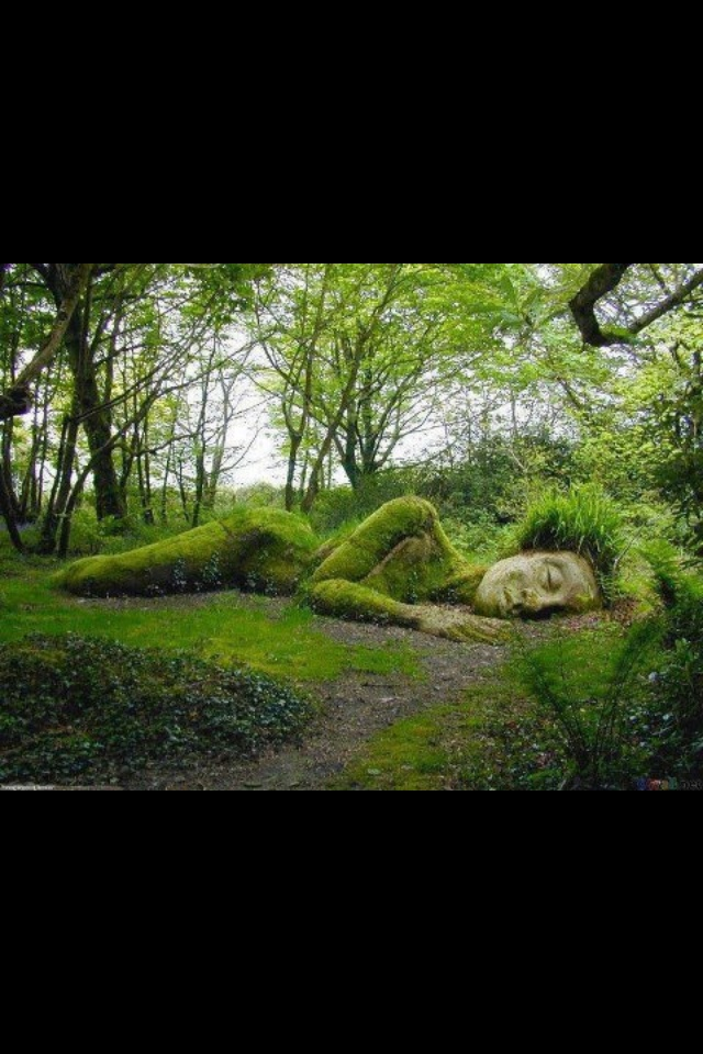 207 Best Fantasy Garden Ideas Images On Pinterest