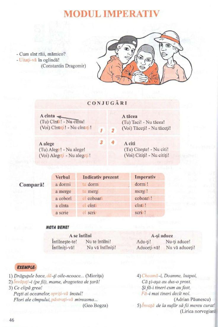 Gramatica Limbii Romane in Scheme Si Tabele
