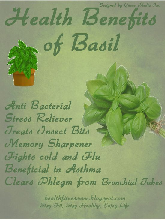 Health Benefits of Basil #health