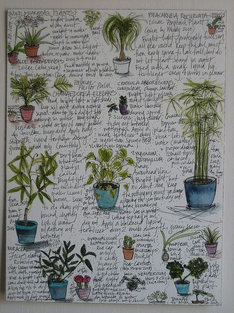GARDENING TIPS :: Keep a houseplant log. Good idea to jot down notes & sketch pictures to keep track of your plants' names & needs. | #houseplants