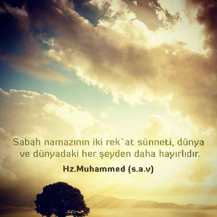 #hadith #hadeeth #quran #coran #koran #kuran #corán #hadis #kuranıkerim #salavat #dua #islam #müslüman #muslim #muslima #muslimah #sunnah #ALLAH #HzMuhammed (S.A.V) #TheQuran #TheProphetMuhammad (P.B.U.H) #TheHolyQuran #religion #pray #prayer #namaz #invitetoislam #islamadavet #love