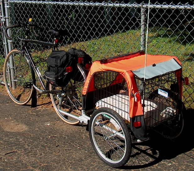 Child trailer converted to dog trailer