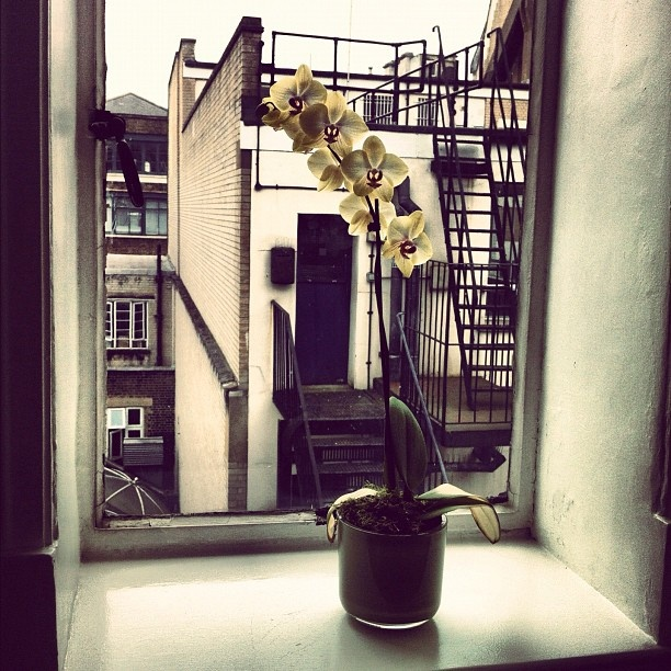 Another great day at #WellaStudio in #London - @esteticanetwork- #webstagram