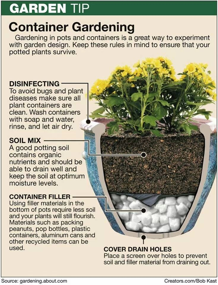 Great information on container gardening!!! Bebe'!!! Really good information!!!