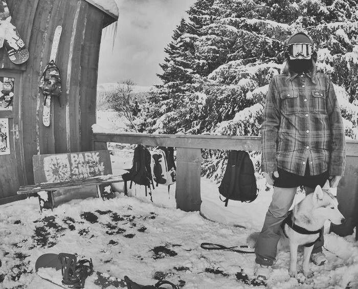 Winter is still here #siberianhusky #winter #snowboarding #snow