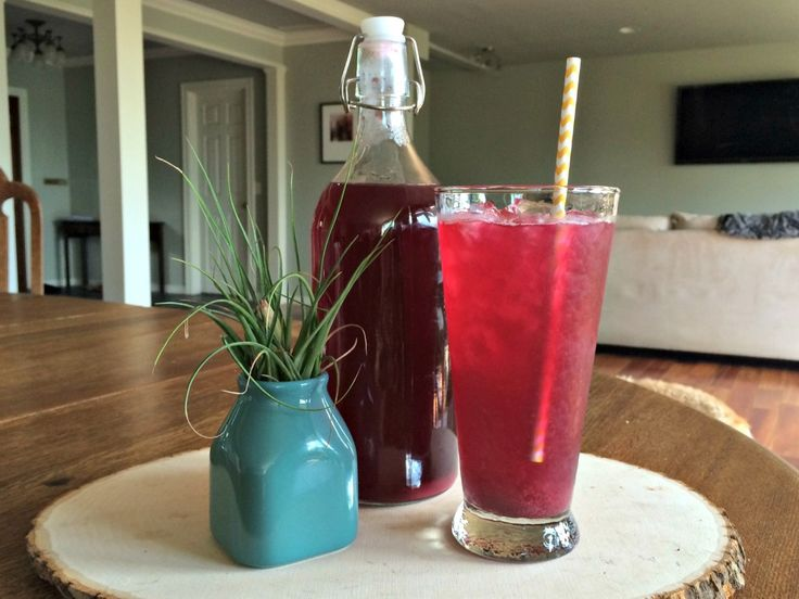 Naturally Fermented Blueberry Ginger Soda | Nourished Roots