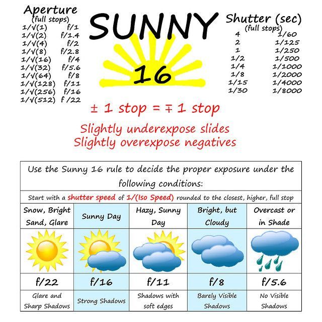 Sunny 16 Cheat Sheet  by Some Guy (Art), via FlickrSunny 16, Wedding Photography, Photography Guide, Cameras Bags, 16 Rules, Photography Design, Photos Tips, Photography Cheat Sheets, 25 Photography