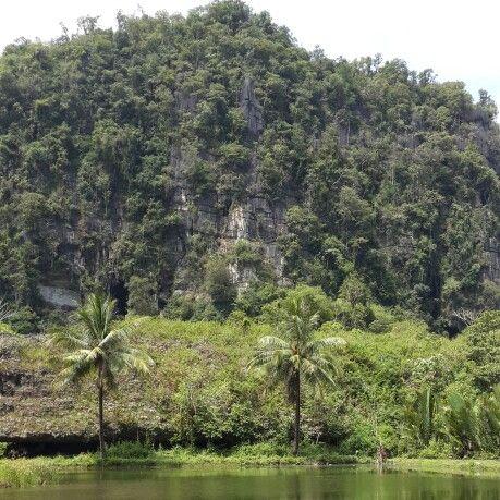 Karst site in Rammang-rammang, Maros city, South Sulawesi, Indonesia