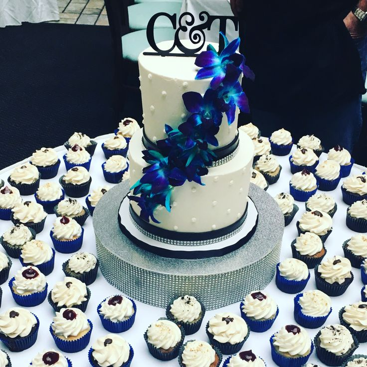royal blue cupcake wedding cakes 62 best cakes of wedding cakes images on 19363