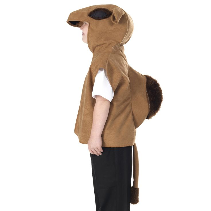 106 best ideas 4 holidays images on pinterest nativity costumes camel kids tabard kids fancy dress costumes available to buy online solutioingenieria Images