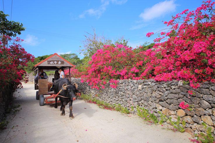長期でゆったり巡るたび沖縄八重山諸島のすすめ観光スポット石垣島竹富島波照間島