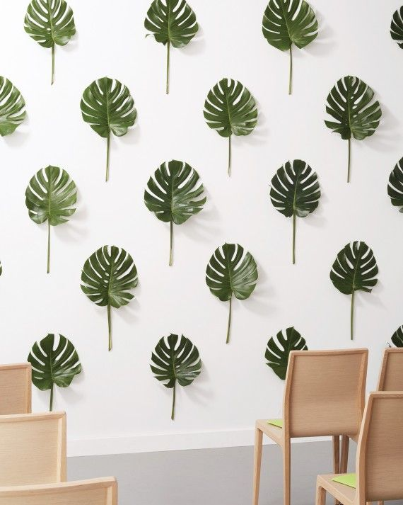 Say your vows against a lush backdrop—. using removable adhesive (such as Command strips) to tape Monstera leaves in a pattern you like