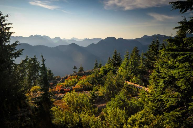 Hike Vancouver - Dog Mountain (Mount Seymour, North Vancouver)