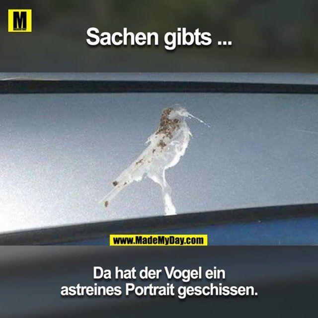 """""""Scheißbild"""""""