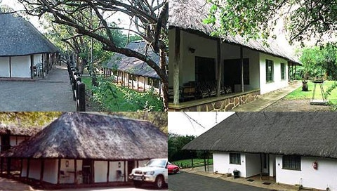 Punda Maria Rest Camp has lush vegetation which attracts a wide variety of rare bird species and wildlife.