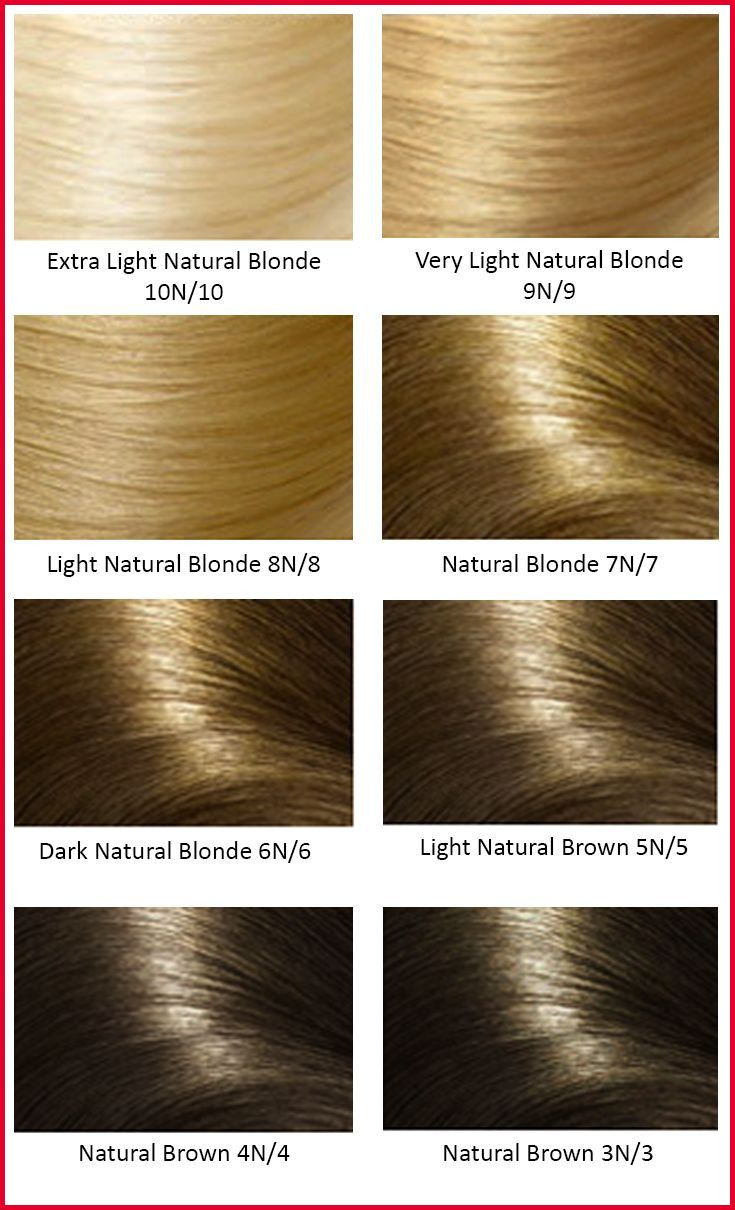Base Hair Colors Hair Color Pinterest From Hair Color Base Chart Source Pinterest Com Blonde Hair Color Chart Argan Oil Hair Color Hair Color Chart