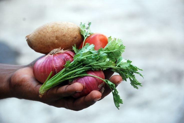 Végétarien, vegane, crudivore, flexitarien... qu'est-ce qu'on mange?