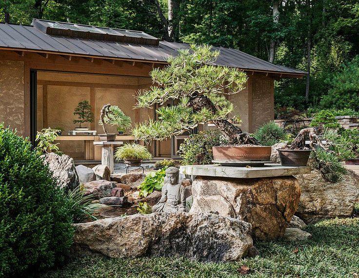 jardin asiatique à l'esprit sauvage avec bassin aquatique et statue de Bouddha, arbres, buis, arbustes et abri de jardin en bois