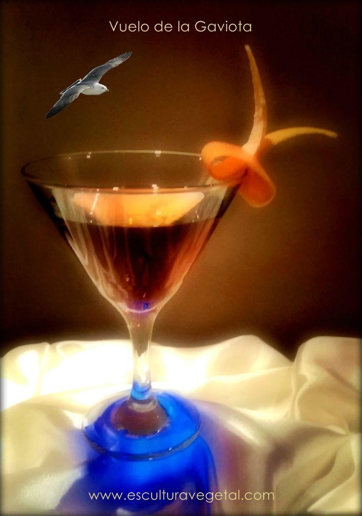 Vuelo de la Gaviota.  ¡ Transforma Tus Cocktails en Arte, Formas y Colores ! ¡ Nuestra meta es proporcionarte los recursos que necesites para el éxito en tus presentaciones de cocktails, platos y buffets! www.esculturavegetal.com