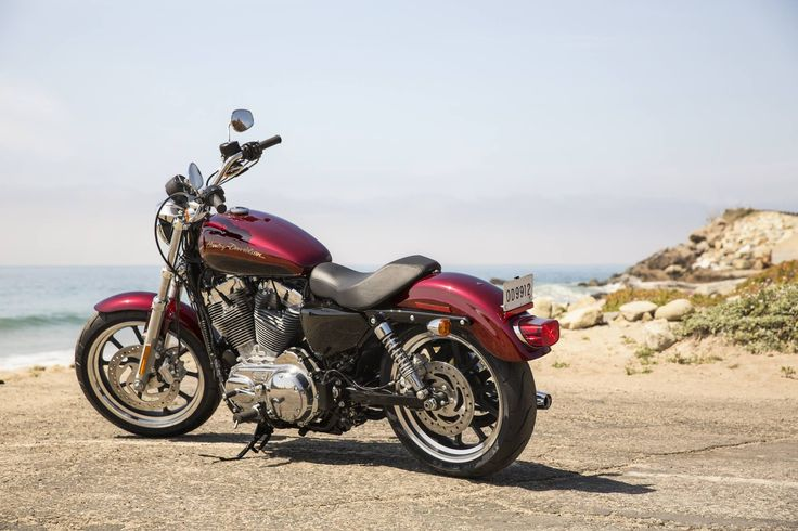 Super Low Harley for Women | 2014 Sportster 883 SuperLow