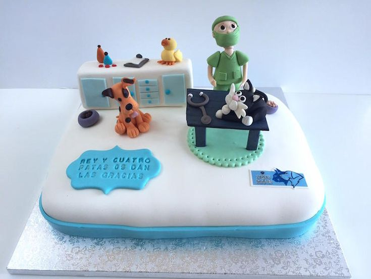 1000 Images About Vet Cakes On Pinterest Search Tech