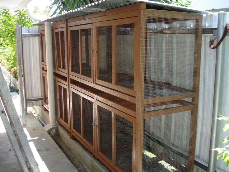 Great Rabbit Cage (inspiration only, link unavailable)