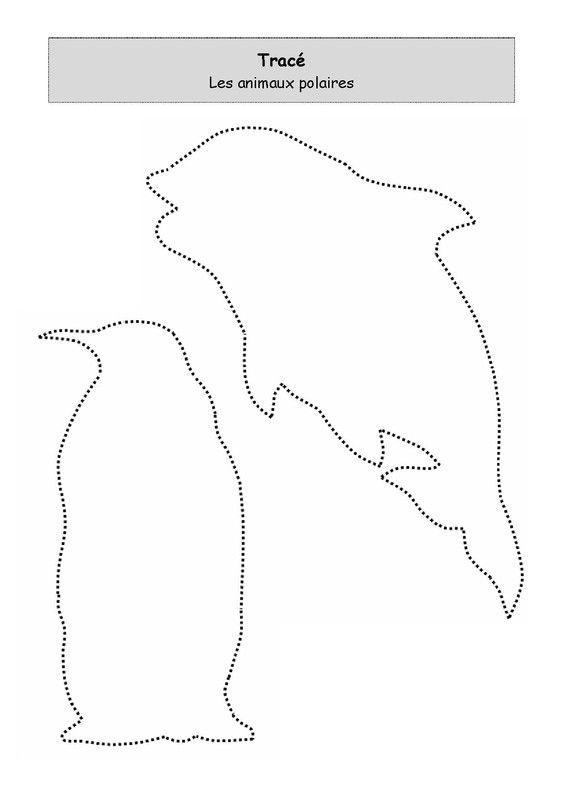 Les animaux polaires n°1 à tracer