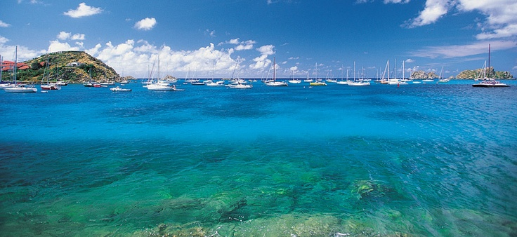 Point-a-pitre, Guadeloupe. #Caribbean