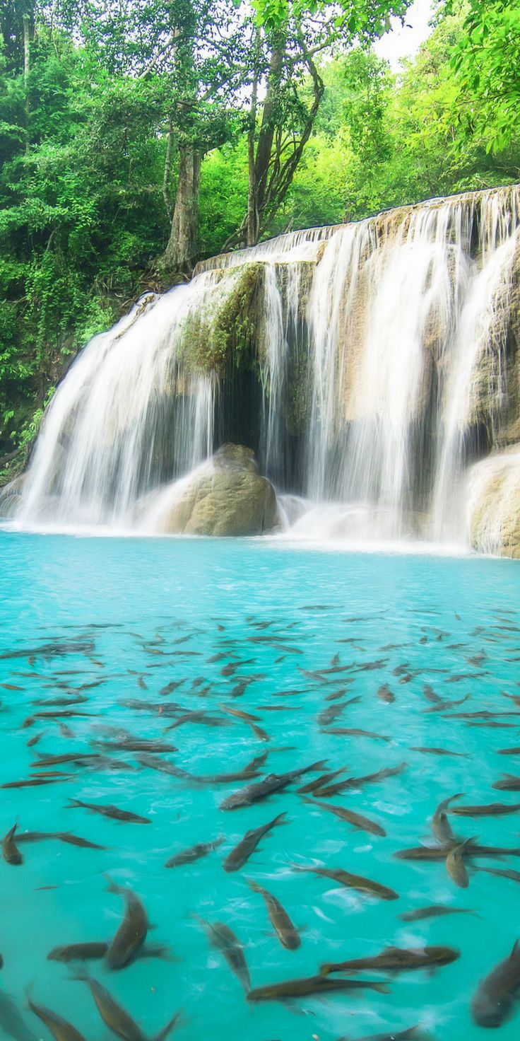 Best 20+ Beautiful waterfalls ideas on Pinterest | Waterfalls, Natural waterfalls and Grand ...