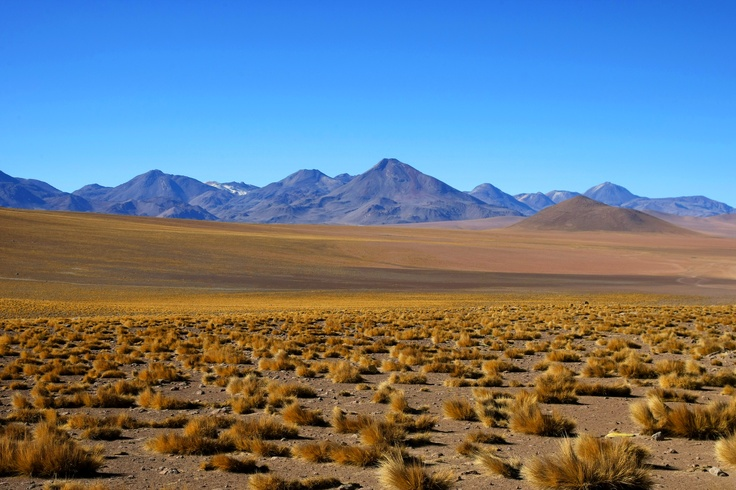 Atacama Desert, the most arid desert in the world - Chile #worldplaces #landscapes
