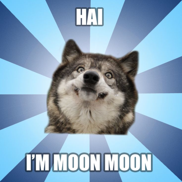 Moon Moon Meme WHO INVITED MOON MOON???  Oh Natalie...you really shouldn't have shown me that.