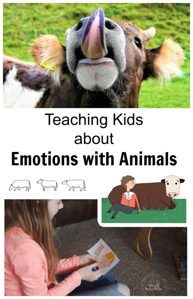 Temple Grandin was moved by cows emotions when no one else seemed to notice. Teach kids about reading emotions of both people and animals to increase empathy.