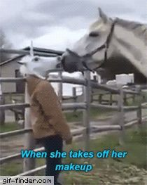 Freaking a horse out with a horse mask