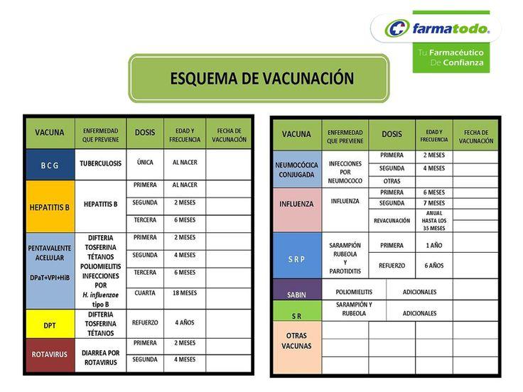 FARMACIA ¿Qué es la cartilla nacional de vacunación? La cartilla nacional de vacunación es un documento oficial que se entrega de forma g...