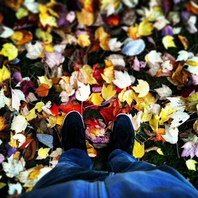 #autumn #イチョウ #紅葉 #北海道 #秋 #空 #me #basel #swissgirl #switzerland #girl #today #happy #beautiful #life #love #portugal #nature #portosanto #like #weather #world #follow #instaweather #day #cool #nice #colorful #pt #instaweatherpro