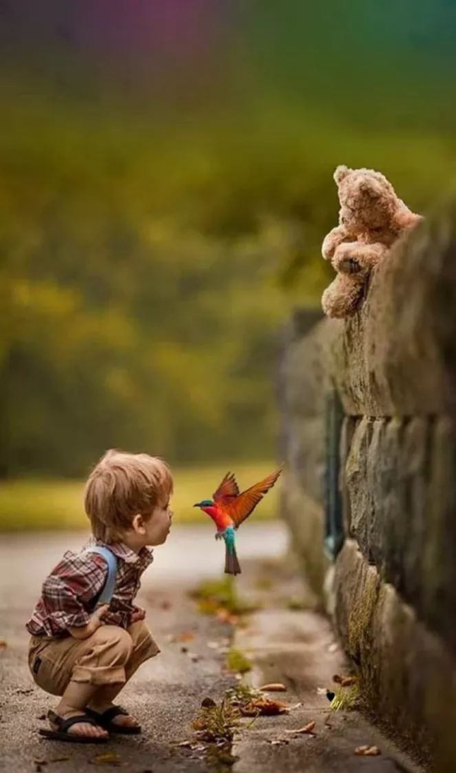 Wonders of God's world. Precious child with view face to face with bird mid-flight and his teddy bear looking on. Фотография